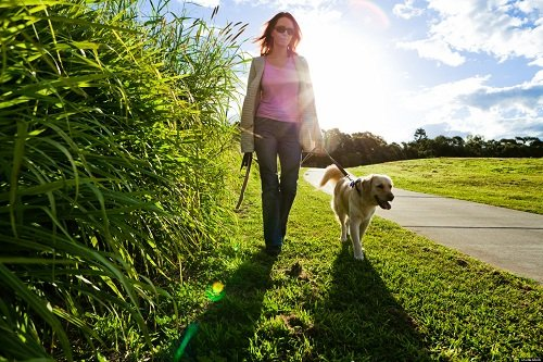 Walking Also Can Be Cardio Workout