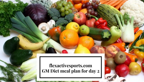 gm diet meal plan for day 2