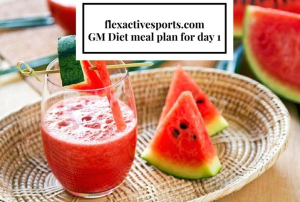gm-diet-meal-plan-for-day-1