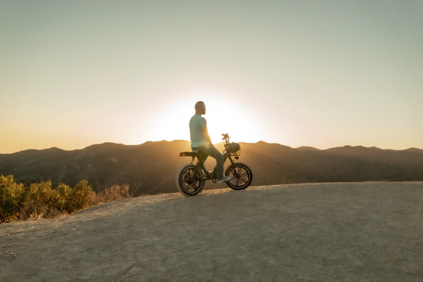 Can You Pedal an Electric Bike With and without Battery?